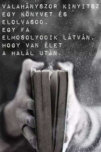 Könyv Omniverzum