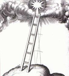 evolucion-involucion-revolution-escalera
