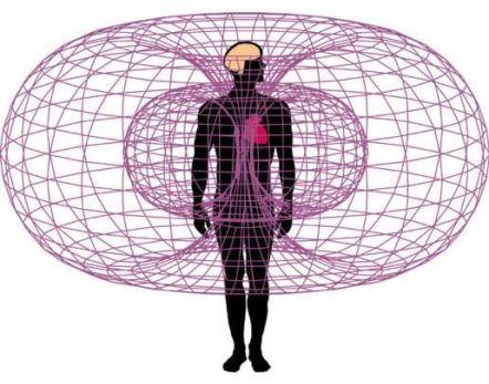 heart-magnetic-field